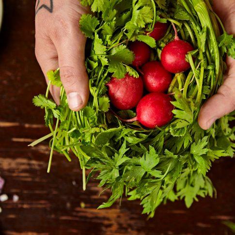 Fresh Food - Product - Harderlee