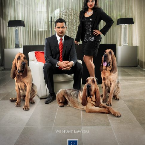 lawyers with dogs - commercial - harderlee