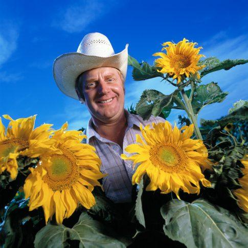 Sunflowers - Editorial - Harderlee